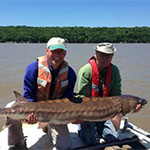 Anchors, Caviar, and Endangered Sturgeon: A Story of Fisheries Research on the Hudson River