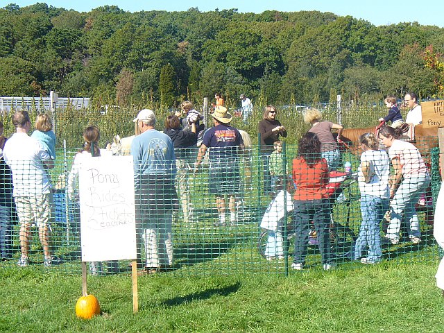Pumpkin Day at Bourne Farm, Falmouth, MA